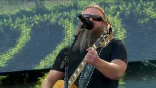 Jamey Johnson - Wild and Blue (Live at Farm Aid 30)