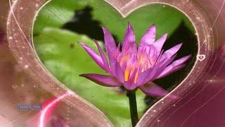 Francis Goya - Only Love