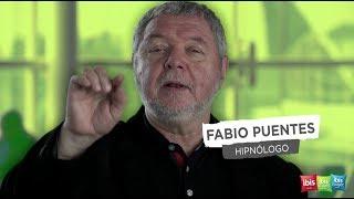 """Quarto por Hora ibis - Fabio Puentes 30"""""""