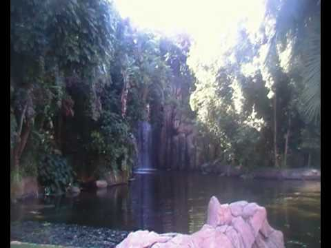 One of many swimming pools at Sun City – South Africa.MP4
