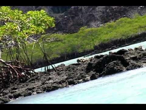 Trailer Islas encantadas.avi
