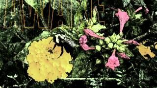 Awake Under The Knife- Reborn Scum [instrumental]