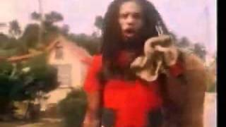 Eddy Grant   I don t wanna dance