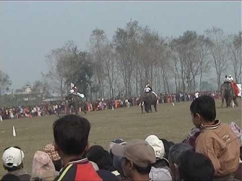 International Elefantrace 2006 Chitwan Nepal.