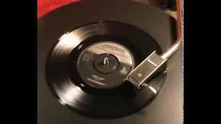 The Castaways - Liar Liar - 1965 45rpm