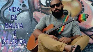 Salomão do Reggae - Vida de Baleia é Colorida