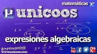Imagen en miniatura para Expresiones algebraicas 01