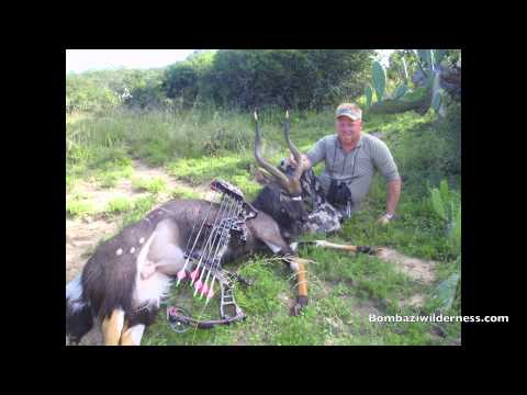 Bombazi Bow Hunting, South Africa