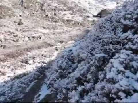 Treking Langtang – april 2010 – Sedmi del