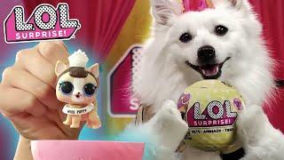 LOL Surprise! | Series 3 Pets | :30 Commercial