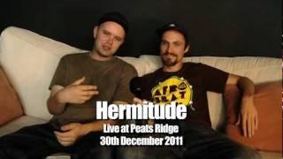 Hermitude live stream Peats Ridge 2011 - Shout Out