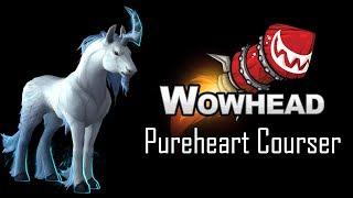 pureheart courser item world of warcraft