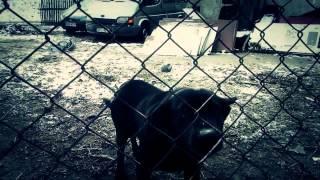 Korexx- Zanim zrozumiesz (OFFICIAL VIDEO)