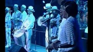 Paulinho da Viola e Convidados - Portela, passado de glória - Heineken Concerts 1994 Rio de Janeiro