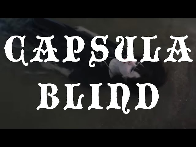 "Capsula ""Blind"" - Solar Secrets"