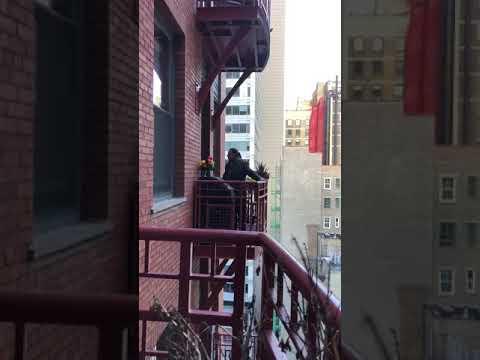 'Conrona-Concert': Balcony Springtime Song Youtube Video