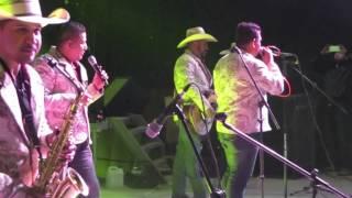 """Descendencia de Rio Grande """"Del Negociante"""", en Los Gomez S.L.P. Vamonos Pa El Baile."""