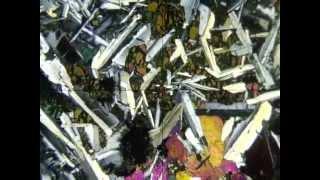 Rochas Magmáticas 8   Diabásio com olivina