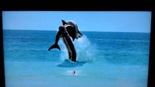 Sharktopus!