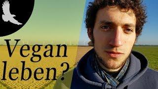 Über 4 Jahre vegan - wie fing alles an? | Meine Anfänge als Veganer