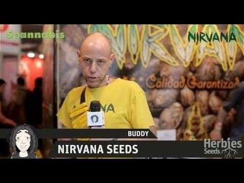 Nirvana Seeds @ Spannabis Barcelona 2013