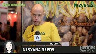 Herbie Interviews Nirvana Seeds