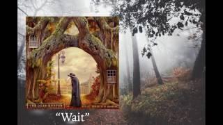 The Dear Hunter - Wait / Lyric Video