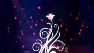 osmonds LIVE paper roses 2008 glasgow