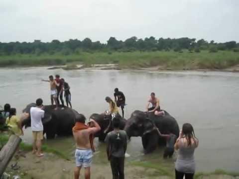 Bañándome con el elefante