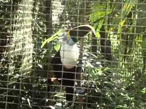Zoo el Arca en Napo