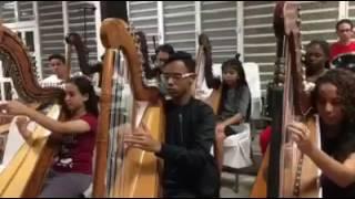 Despacito interpretado en arpa y cuerda