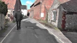 Walsingham Abbey Snowdrops - February 2014 part 7