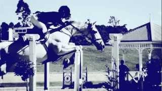 D N A || equestrian