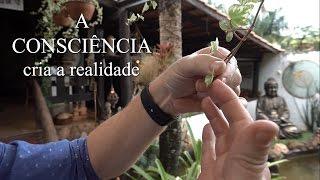 A Consciência cria a realidade   Dr Milton Moura #02