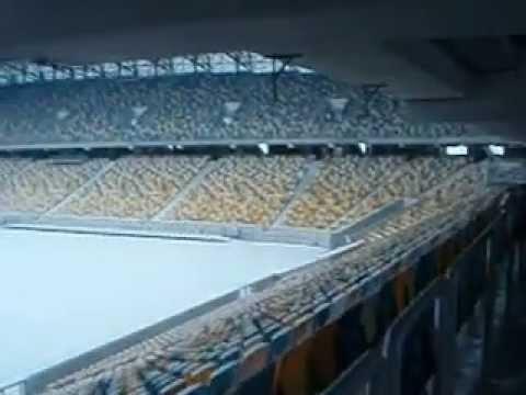 Arena Lviv: The Pitch