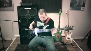 "Francesco Carcano playing on ""Cose della vita"" (Eros Ramazzotti & Tina Turner)          [bass cover]"