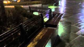 봄비 내리는 마로니에 공원(비에 젖은 벤치,빗소리,번지는 불빛)20150303