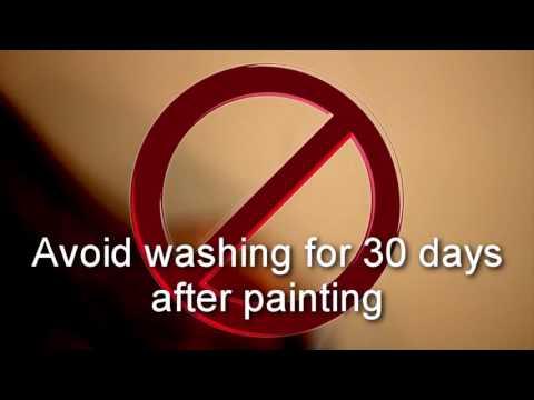 Walls & Paint