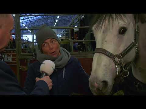 Gothenburg Horse Show Winner groom award 2018,  Chiara de Crescenzo