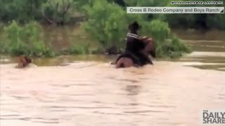 Hero dad & sons rescue 31 horses in Texas flood