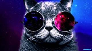 Steve Aoki vs. Ummet Ozcan ft.  Will. I. AM. -  Born To Be A Spacecat (PureBells Mashup)