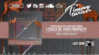 Tchami & Malaa feat. Avicii & Nicky Romero - I Could Be Your Prophecy (Timmy Turner Mashup)