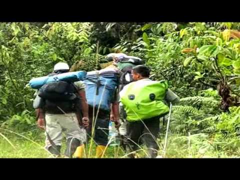 EXPEDITION AMAZON 5000 – Cause Presentation