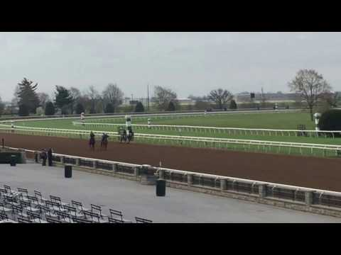 Bourbon Country on the outside 3-29-17 Keeneland.