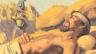 Capítulo 35: O Bom Samaritano