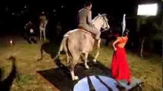 Entre Cuerdas,  Caballos  y Flamenco