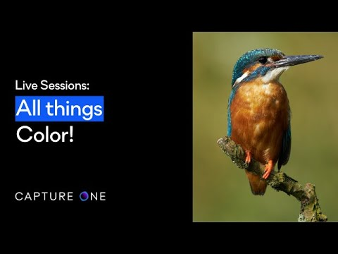 Capture One 21 Live | All things color