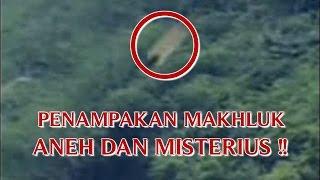 """VIDEO PENAMPAKAN MAKHLUK """"HALUS ATAU GAIB YANG SANGAT ANEH DAN MISTERIUS"""" TERBANG DI ATAS BUKIT !!"""