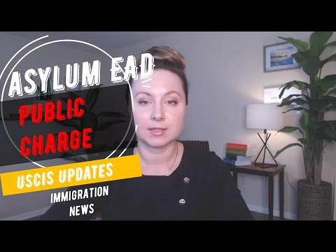 USCIS Public Charge, Asylum and Court Immigration News    NYC Immigration Lawyer   Immigration USA