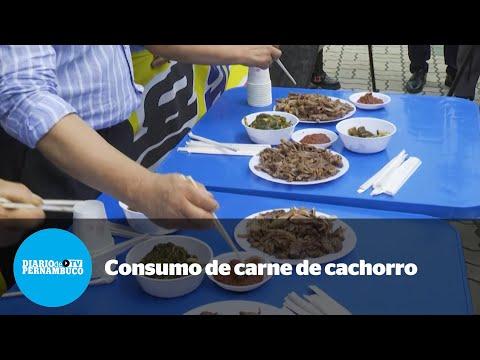 Consumo de carne de cachorro sob reavaliação na Coreia do Sul